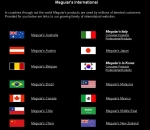 Over 40 International Meguiar's Websites